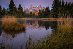 mountains, Wyoming, wy, jackson, Tetons, Grand Teton Park, landscape, Fall, trees, aspens, fall color, snake river, oxbow bend, dawn, sunrise, water, schwabacher, landing, landing, predawn, dawn