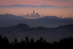 San Francisco, CA, Mt tam, mt tamalpais, atmospherics, fog woods, bay area, marin