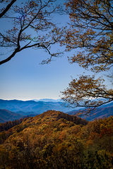 great smoky national park, smokys, mountains, fall, water, nc, tn, north carolina, tennessee, maples, colors, national, park, flora, trees,