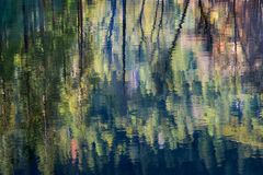Yosemite, Sierra, mountains, yosemite valley, merced river, merced, water, dogwood, spring color, reflection, spring, reflections,