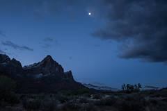 Zion, Zion National Park, ut, utah, red rock, trees, snow, spring, colorado plateau, southwest, mountains, sunset, clouds, sunrise, watchman, moon, moonset, twilight
