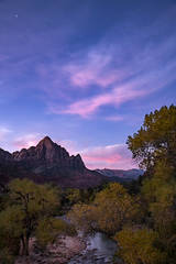 Zion, Zion National Park, ut, utah, red rock, trees, fall, colorado plateau, southwest, mountains, sandstone, zion canyon, weeping rock, cottonwood, trees, flora, maples, fall colors, watchman, stars