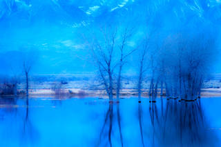 Farmers Pond, Dawn