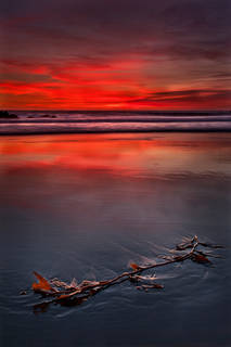 Pfeiffer Beach at Twilight
