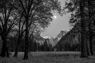 Black Oaks Half Dome Moonrise