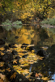 Merced River Fall Reflection