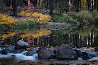 Merced River Fall Colors