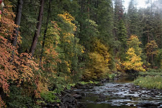 Merced River Fall Colors