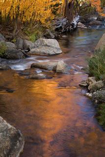 Aspen Reflections Bishop Creek