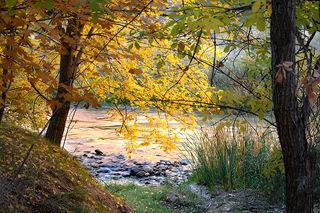 Virgin River Sunrise