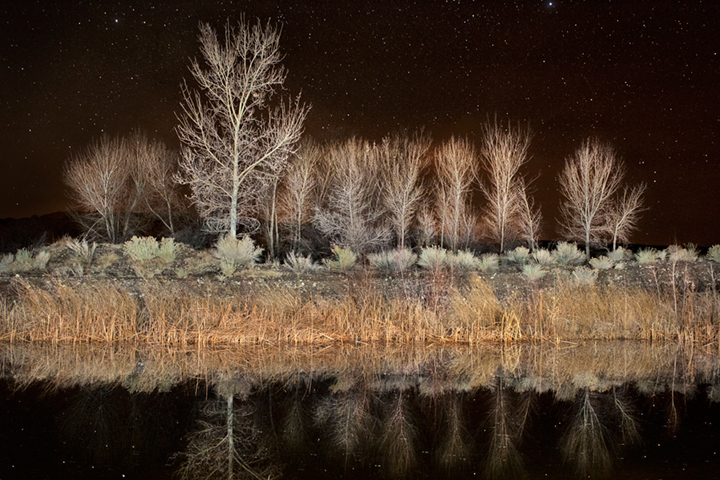 cottonwoods, water, reflections, ca, california, sierra, eastern, trees, sunset, milky way, stars,  bishop, mountains, ponds, owens river valley, owens river, photo