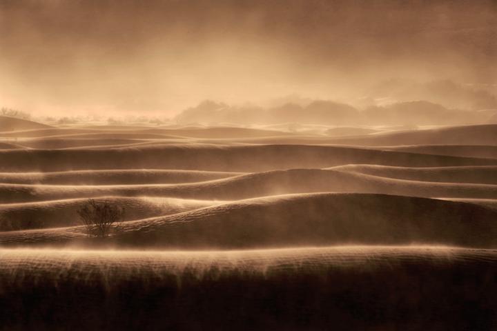 mesquite flat, sand, dunes, death, valley, ca, california, sunrise, desert, southwest, sandstorm, wind, photo