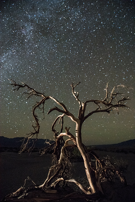 death valley, desert, southwest, west, trees, night, stars, national park, CA, California, mountains, photo