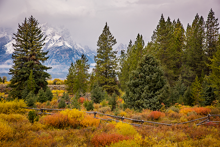 grand teton national park, tetons, snake river, snake, river, mountains, trees, water, color, aspens, clouds, meadows, fall, autumn, colors, cottonwoods, photo