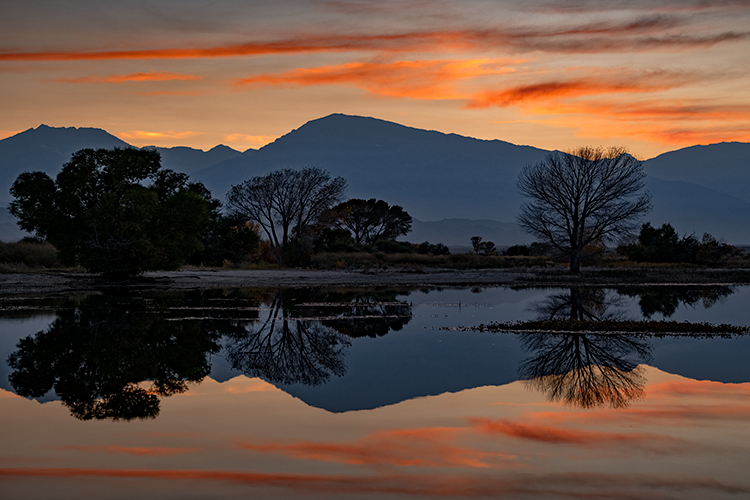 eastern sierra, sierra, aspens, bishop, fall, ca, california, trees, water, mountains, fall colors, fall colors, sunset, farmers pond, clouds, photo