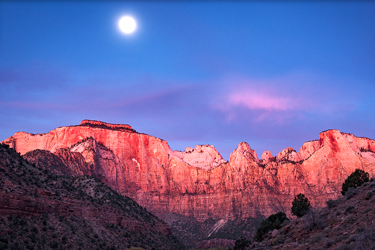 Zion, Zion National Park, ut, utah, red rock, trees, fall, colorado plateau, southwest, mountains, sandstone, zion canyon, weeping rock, cottonwood, trees, water, waterfall, winter, snow, dawn, temple, photo