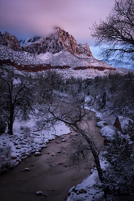 Zion, Zion National Park, ut, utah, red rock, trees, fall, colorado plateau, southwest, mountains, sandstone, zion canyon, weeping rock, cottonwood, trees, water, waterfall, winter, snow, virgin river, photo