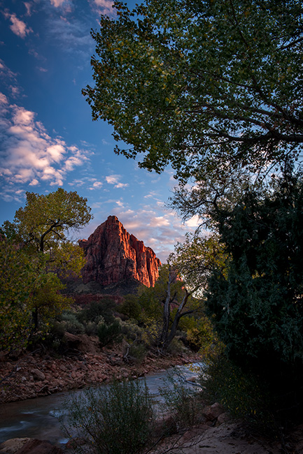 Zion, Zion National Park, ut, utah, red rock, trees, fall, colorado plateau, southwest, mountains, sandstone, zion canyon, weeping rock, cottonwood, trees, virgin river, watchman, sunset, water, photo