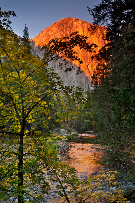 Merced River, Yosemite Valley, merced, river, yosemite, valley, ca, california, sierra, mountains, trees, dogwood, fall, valley view, leaves, reflections, , photo