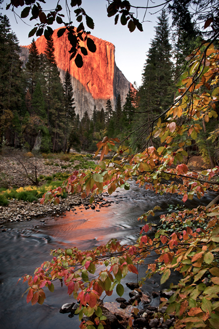 landscape, merced, river, sunset, reflections, yosemite, ca, california, el capitan, meadow, sierra, mountains, trees, colors, trees, fall, black, oaks,, photo