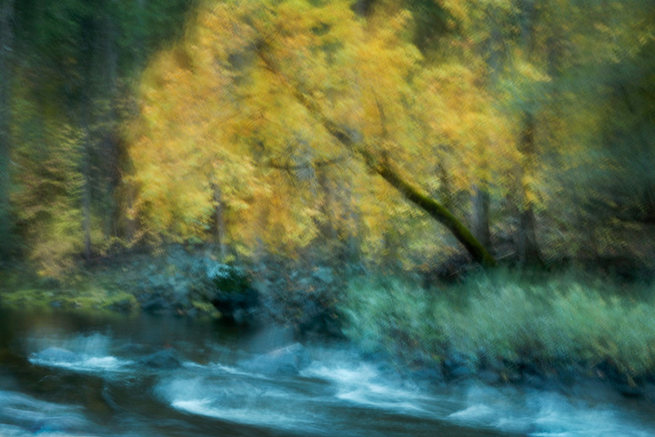 yosemite, mariposa grove, sequoia, ca, mountains, sierra, trees, impressions, movement, northern california, california, water, merced river, fall,, photo
