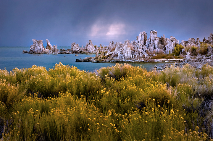 mono, lake, sunrise, tuffs, sages, wildflowers, eastern sierra, sierra, fall, dawn, lee vining, mountains, photo