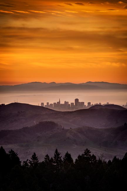 mt tamalpais, fog, sunrise, san francisco, marin, trees, headlands, ca, california, photo