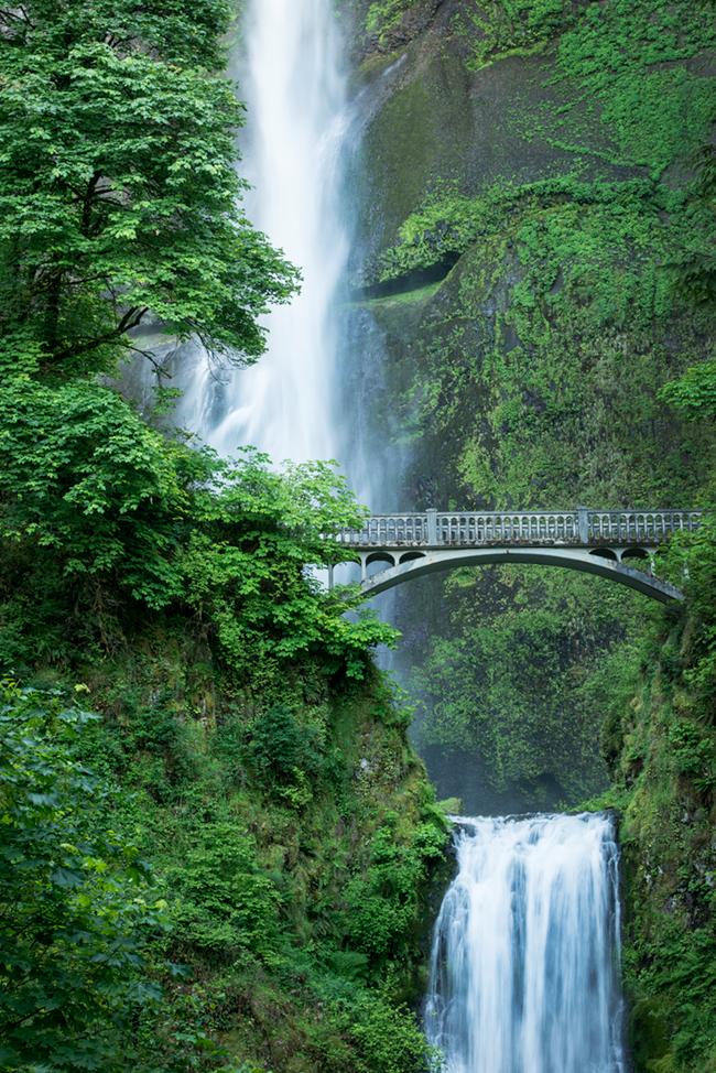 multnohmah falls, or, oregon, columbiia river gorge, trees, water, waterfalls, pacific northwest, photo