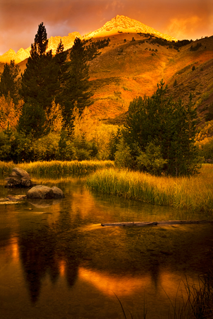eastern sierra, sierra, aspens, fall, fall color, ca, california, trees, storm, winter, sunrise, bishop, north, lake, water, mountains, photo