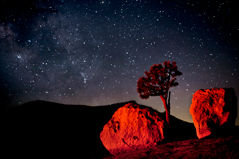 yosemite, olmsted point, stars, milky way, trees, mountains, sierra, ca, california, high country, night skies, photo