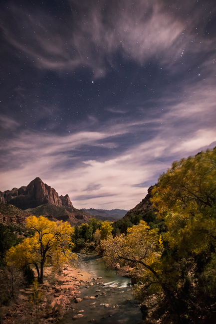 trees, fall, fall color, zion, mountains, utah, ut, southwest, virgin, river, virgin river, watchman, cottonwoods, stars, photo