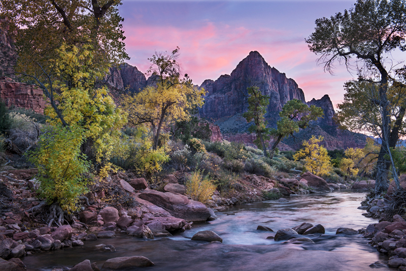 trees, fall, fall color, zion, mountains, utah, ut, southwest, virgin, river, virgin river, watchman, cottonwoods, twilight, sunset, photo