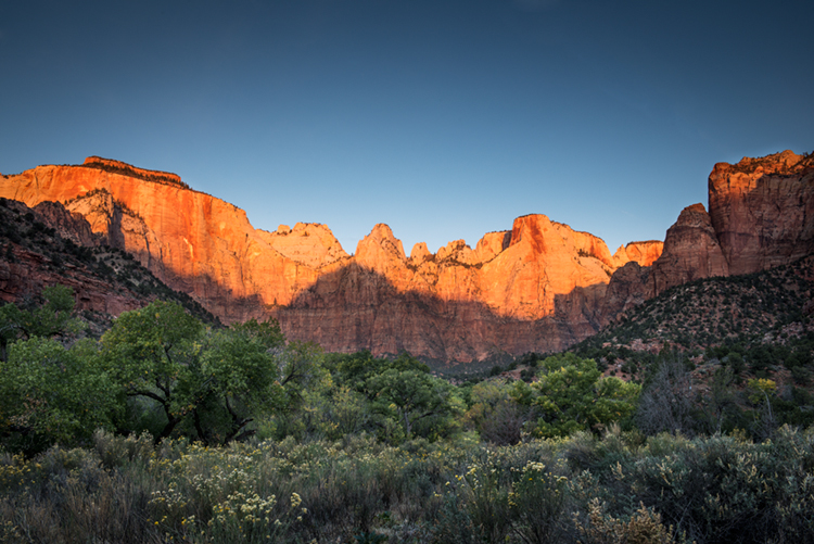 trees, fall, fall color, zion, mountains, utah, ut, southwest, virgin, river, virgin river,  cottonwoods, twilight, sunrise, towers of the virgin, towers, , photo