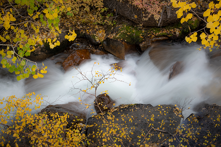 Eastern Sierra, Sierra, CA, California, Fall, mountains, foliage, leaves, autumn, aspens, flora, trees, water, bishop, creek, rock creek, light, photo