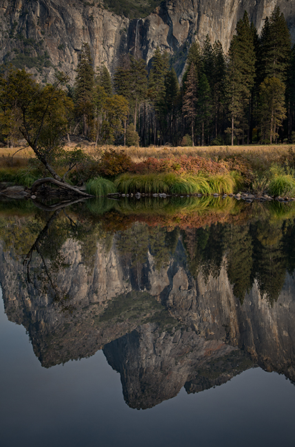 Yosemite, Sierra, mountains, yosemite valley, fall, merced river, merced, water, maples, fall color, fall,  wildlife, flora, fauna, valley view, bridalveil falls, reflection, photo