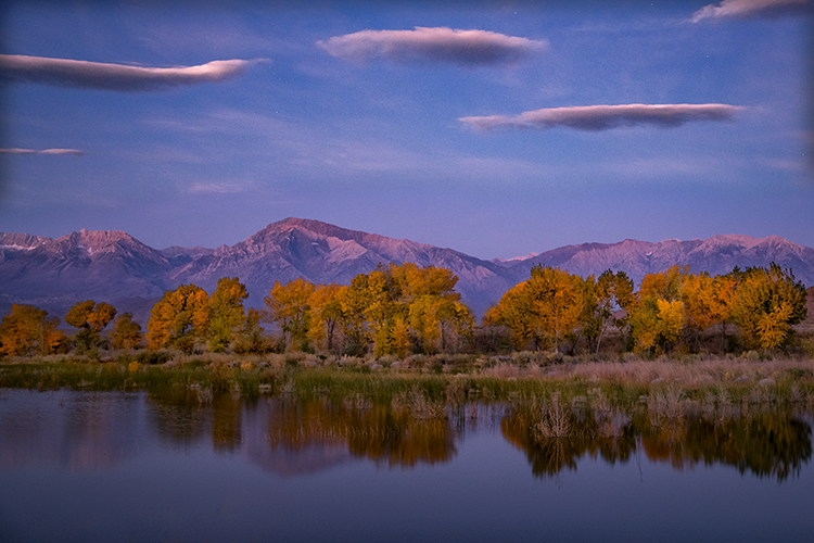 eastern sierra, sierra, aspens, bishop, fall, ca, california, trees, water, mountains, fall colors, fall colors, sunrise, farmers pond, clouds, photo