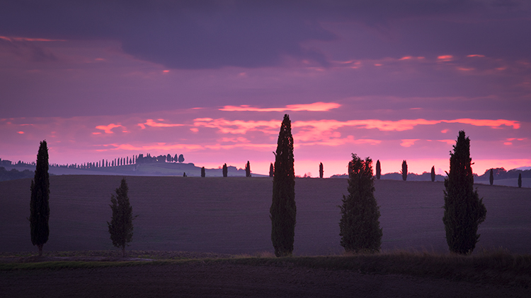 europe, italy, tuscany, pienza, siena, villa, wine, grapes, fields, sunset, clouds, valley, val d'orchia, sunrise, trees, cypress, photo