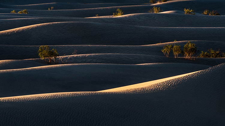 death valley national park, death valley, sunrise, dunes, stovepipe wells, california, ca, sand dunes, photo