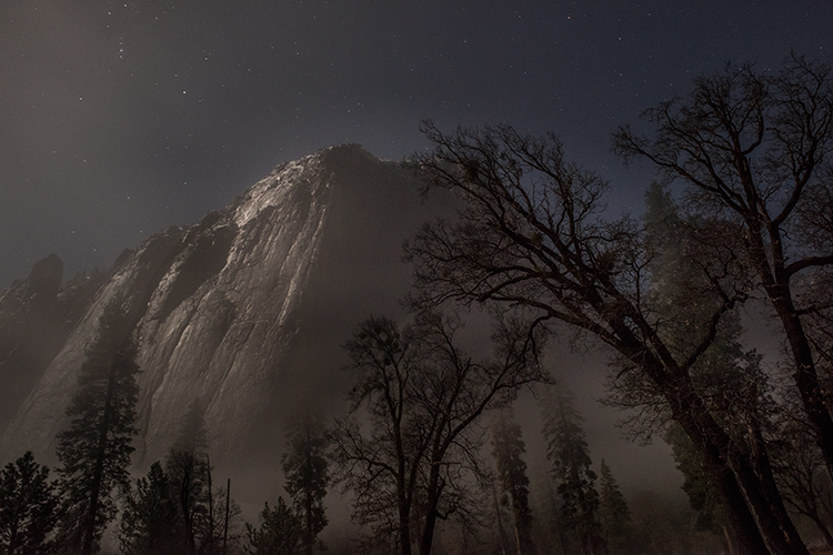 Yosemite, California, Ca, Sierra, valley, Yosemite national park, black oak, el Capitan meadow, meadow, el capitan, trees stars, moonlight, , photo