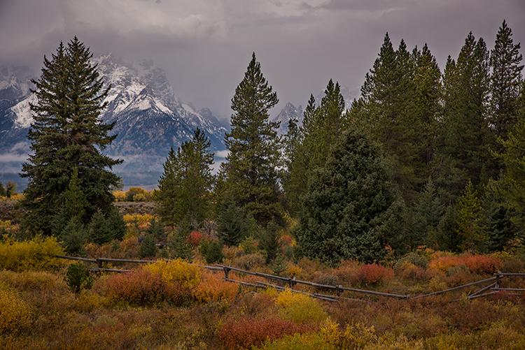 grand teton national park, tetons, snake river, snake, river, mountains, trees, water, color, aspens, clouds, fog, dawn, atmospherics, fall, photo