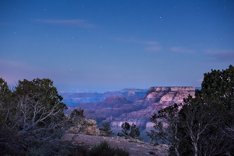 Grand Canyon, stars, Arizona, AZ, colorado river, southwest, west, sunrise, predawn, south rim, photo