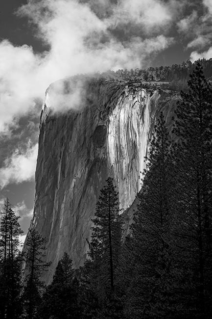 Yosemite, California, Ca, Sierra, valley, Yosemite national park,  el capitan, trees, sunset, horsetail falls, water, clouds, black white, photo