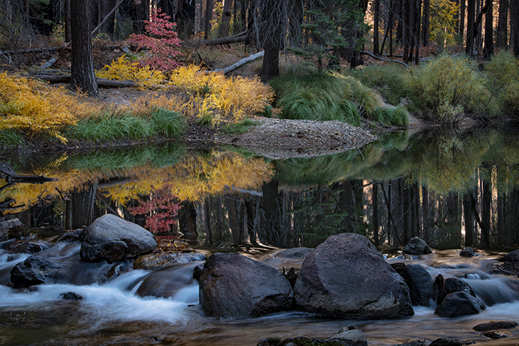 yosemite, national park, sierra, valley, fall, trees, merced, flora, mountains, leaves, ca, colors, merced river, merced, maples,, photo