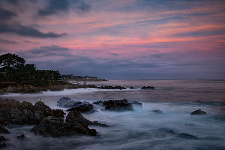 monterey, bay, ca, california, sunrise, water, ocean, pacific, flora, aloes, aloe, cypress, sunrise, surf, rocks, coastline, coast, sea stacks, photo