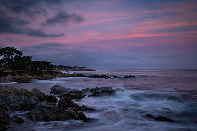 monterey, bay, ca, california, sunrise, water, ocean, pacific, flora, aloes, aloe, cypress, sunrise, surf, rocks, coastline, coast, sea stacks, alpine glow, photo