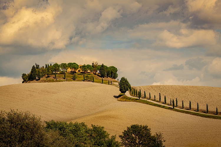europe, italy, tuscany, pienza, siena, villa, wine, grapes, fields, sunset, clouds, valley, val d'orchia, sunrise, cypress, trees...