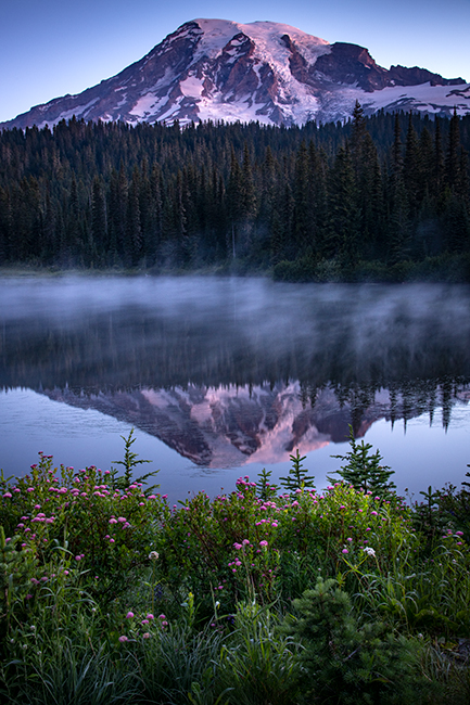 washington, wa, mt rainier, reflection lake, wildflowers, cascades, cascade, mountains, water, lakes, sunrise, reflection, photo