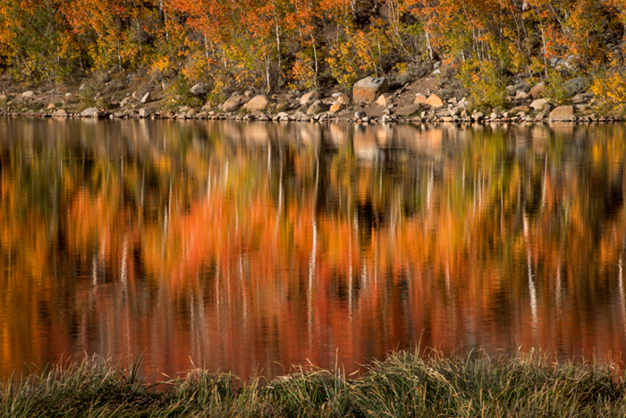 Sierra, fall. color, fall colors, mountains, trees, landscape, Bishop, aspens, california, north lake, sunrise, reflections, photo