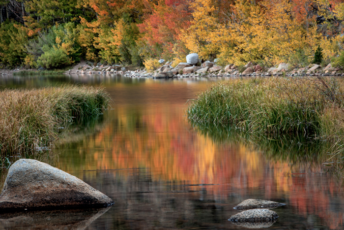 Sierra, fall. color, fall colors, mountains, trees, landscape, Bishop, aspens, california, north lake, reflections, photo