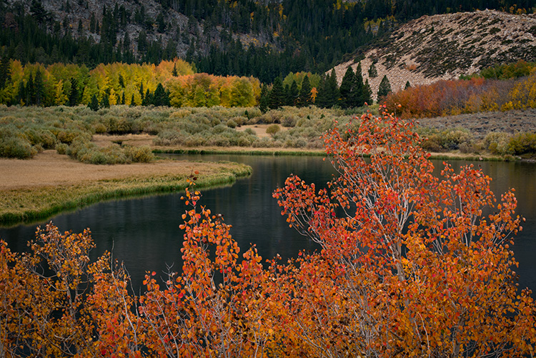 eastern sierra, sierra, aspens,  bishop creek, north lake, fall, ca, california, trees, water, mountains, reflection, fall colors, bishop, photo